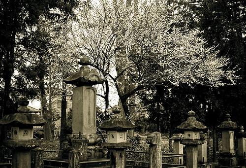 二代目直孝長女亀姫・掃雲院の墓石