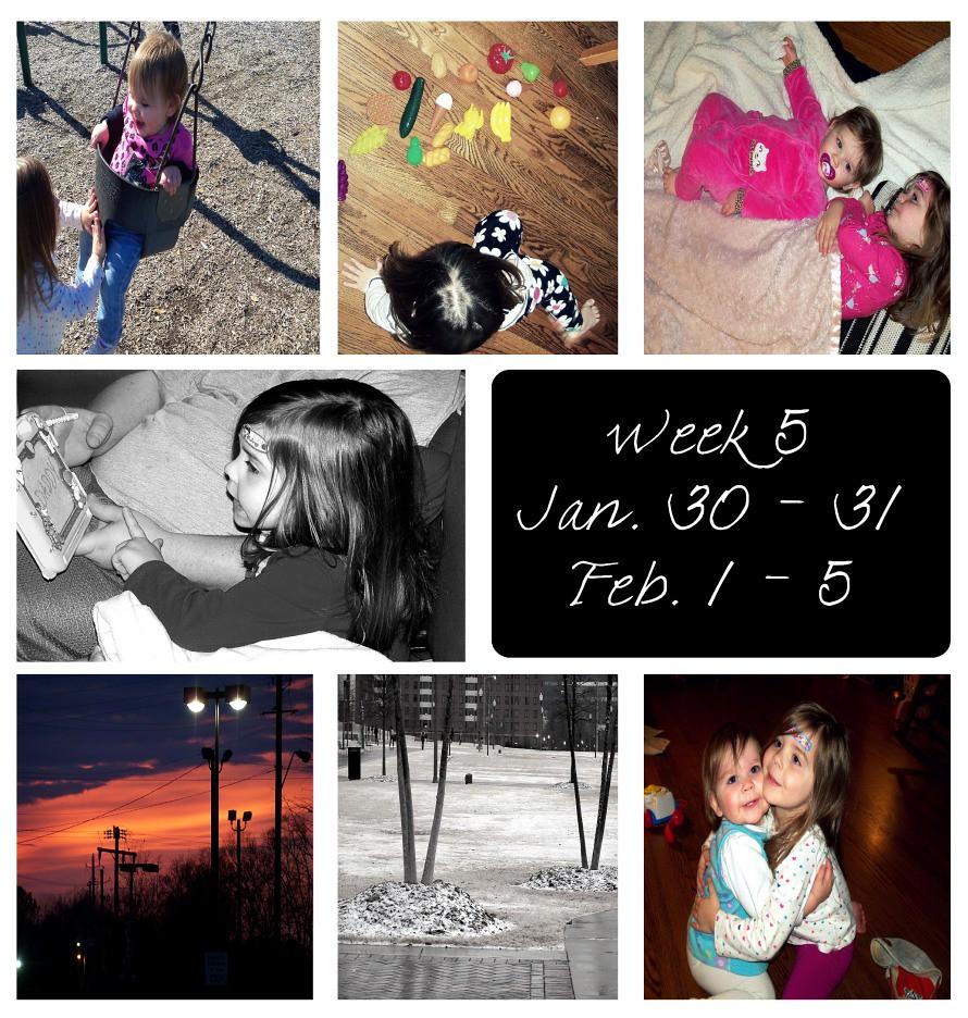 week 5s