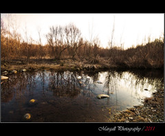Reflections on the little river - non hdr - Parco fluviale di Cuneo - (Margall photography) Tags: park winter italy parco water colors canon reflections river photography italia sigma marco non acqua cuneo 1020 riflessi hdr 30d galletto margall fluviale