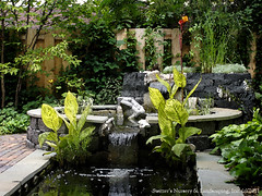 the ART of Landscape Design - Balinese Inspired Water Garden (Switzer's Nursery & Landscaping) Tags: minnesota landscape design landscaping glenn northfield switzers switzer landscapedesign designbuild hardscape hardscaping glennswitzer switzersnursery landscapedesigns theartoflandscapedesign switzersnurserylandscaping artoflandscapedesign theartprints