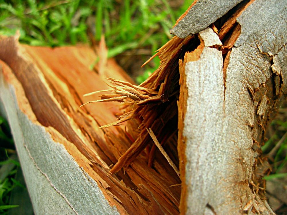 05-02-2011-wood-broken