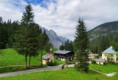 misc_1008_022 (k1rsch) Tags: salzburg geotagged austria buchenwald aut hirschbichl geo:lat=4755510552 geo:lon=1279479047