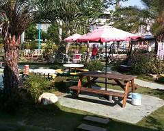 北回店的歡樂廣場花園一角。這也是最常坐的位置。