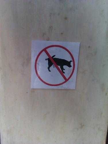 divieto di pisciatina canina