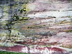 la roche de DABO (alainalele) Tags: france internet creative commons bienvenue lorraine licence 57 moselle dabo presse bloggeur paternit