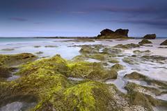 / (Dan. D.) Tags: ocean sunset sky cloud seascape water canon landscape dominican republic 5d reef mkii cabarete sunrais