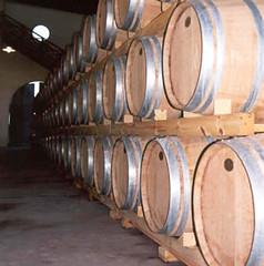 San Juan: Predominan los vinos blancos en stocks