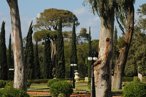 Garden at Bahji