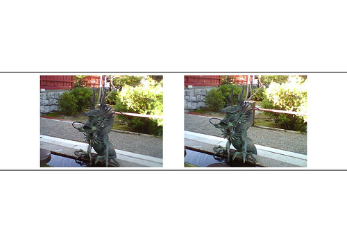 Stereoscopic Picture 110226 #05