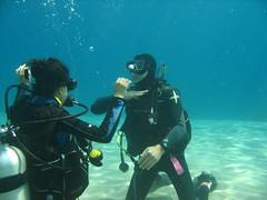 February_2011 (24) (acmt2001) Tags: sea woman fish coral underwater scuba diving bikini reef swimsuit eilat bathingbeauty              redsea