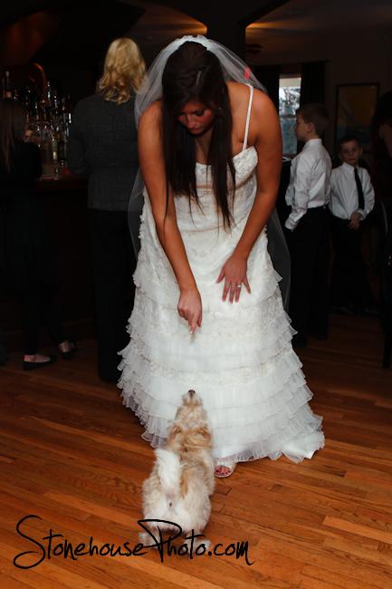 Bride & her doggie