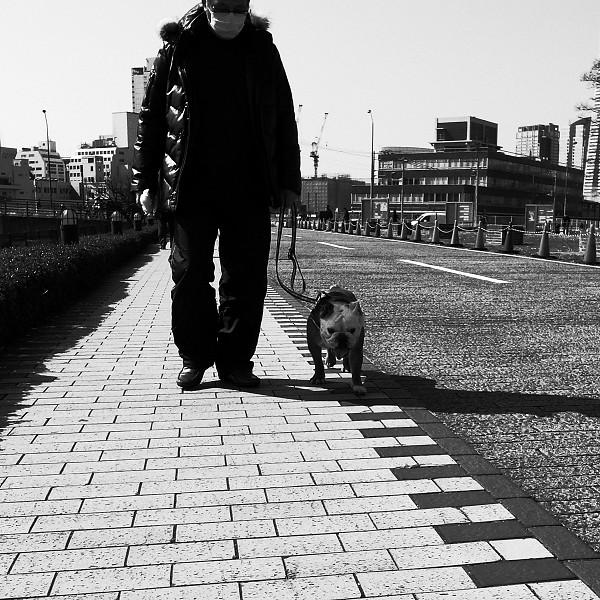 横浜 お散歩