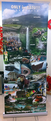 photo montage of Batu roll-up banner