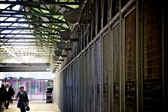 World Trade Center pedestrian bridge 2 (organicthink) Tags: city bridge newyork manhattan worldtradecenter streetphotography photowalk pedestrianwalkway