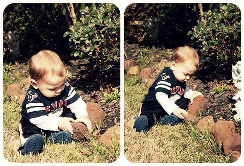 Aaron Gardening