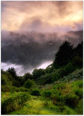 (Philippe Vieux-Jeanton) Tags: california nature fog landscape hills marincounty hdr millvalley 2011 tamron1750mmf28 sonydlsra700 sanfranciscobayaera