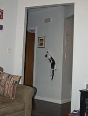 Doorbell (OrbitofGlass928) Tags: cats cute animals funny kitties