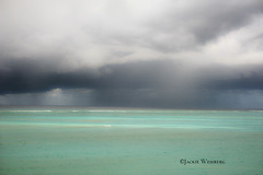 Rain clouds over the Atlantic Ocean in Turks and Caicos Islands (jackie weisberg) Tags: travel sea vacation sky tourism beach nature water beautiful rain weather clouds hotel skies view diving bluesky tourists resort beaches tropical tropicalislands hotels oceans resorts provo touristattraction puffyclouds rainclouds turksandcaicos whiteclouds westindies turksandcaicosislands northatlanticocean sevenstars coralreefs providenciales turquoisewater touristdestination gracebay britishoverseasterritory jackieweisberg provedenciales