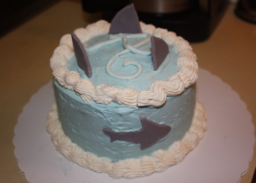 Shark cake for Amanda's Birthday!