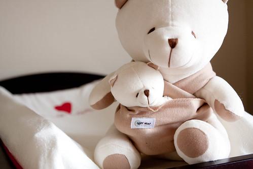 sleepywrap bear.