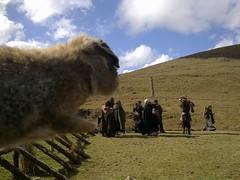 Camelot S1 reshoot in Lugalla