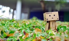 Lost in the Park (h4mster) Tags: outdoors danbo revoltech d5000