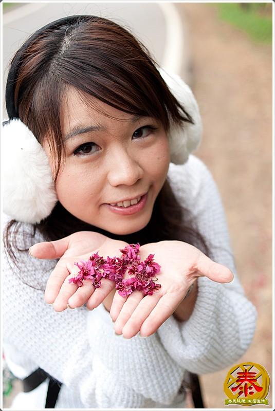 2011-03-06 滬尾櫻花步道a (19)