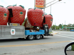 Racked Berry Go Round Turning On To Ives Heading For The Mall Parking Lot. (dccradio) Tags: carnival trees motion tree wisconsin restaurant strawberry berry berries action fastfood gasstation cheeseburger fries burgerking burgers ap hamburger greenery setup trailer bp wi conveniencestore settingup carnivalrides marshfield berrygoround giantstrawberry spinride sellner centralwisconsin sellnermanufacturing marshfieldwi apshows apenterpriseshows rackedrides apcarnival sellnerspinride sellnerrides