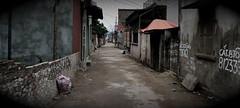 DSC_0182 (tvo314) Tags: vietnam chuathay