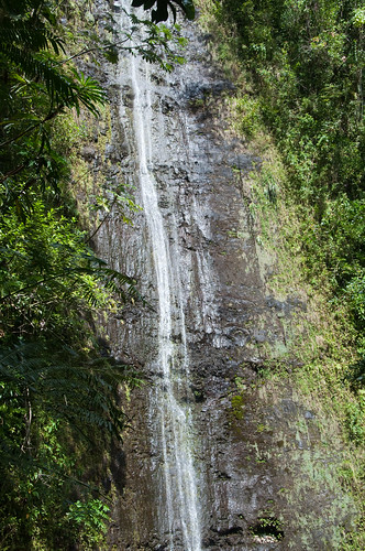 Hike to Oahu's Manoa Falls