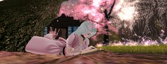 sakura viewing dolly 6 (Sky Haramori / Betsy Honeyvenom) Tags: olive sl secondlife noodles nomine uglyduck junbug spyralle theaterchain