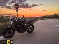 I tramonti con te son sempre i migliori ....... (Autolavaggiobatman) Tags: autolavaggiobatman platamona 1050 moto bike sardegna tramonto triumph speedtriple