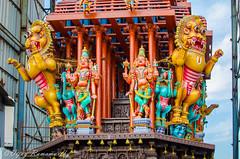 Yaali on the Chariot (Vijay Ram) Tags: yaali chariot rath vishnu chennai colorul parthasarathy temple mythical animal art architecture handmade artwork pallava chola