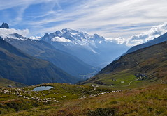 Scne pastorale au pied du Mont Blanc Peaceful atmosphere in front of Mont Blanc (CHAM BT) Tags: alpage mouton troupeau alpes vallee montblanc paisible automne lac rando tourdumontblanc chalet glacier chemin sheep valley peaceful autumn lake hiking walking path fantasticnature