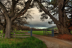 Private Road - Te Waimate (Kevin_Jeffries) Tags: tewaimate road gateway gate storm cloud trees grass nikon nikkor d7100 16mm nature rural newzealand southcanterbury fence