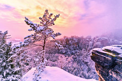 Welcome Back Winter (ill-padrino www.matthiashaker.com) Tags: winter snow schweiz switzerland saxon bastei schsische elbsandsteingebirge gettyimagesgermanyq1