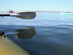 Kayaking Morro Bay (camera_shy) Tags: