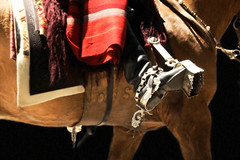 Rosetas (Eduardo Amorim) Tags: horse southamerica argentina leather criollo caballo cheval spur spurs artwork whip sperone poncho cavallo cavalo gauchos pferd pampa loro riendas pala apero gaucho staffa leatherwork cuero américadosul loros stirrup carona cuir gaúcho estribo amériquedusud provinciadebuenosaires recado gaúchos couro sudamérica sanantoniodeareco matras esporas cuoio suramérica américadelsur areco südamerika crioulo caballoscriollos pelego criollos espora pilchas espuelas pilchasgauchas steigbügel recao pampaargentina americadelsud rebenque espuela crioulos cavalocrioulo cincha americameridionale caballocriollo rédeas eduardoamorim cavaloscrioulos estribera estrivo xergão cojinillo étrier pampaargentino