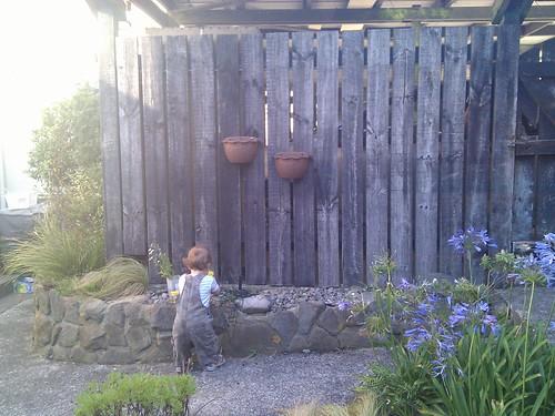 casey proof gardening