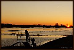 Silhouette (ditmaliepaard) Tags: sunset zonsondergang sihouette highwater picnik demaas hoogwater bej condensstrepenvliegtuigen