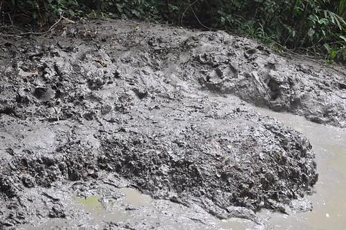 mud volcano - pulau tiga sabah-13