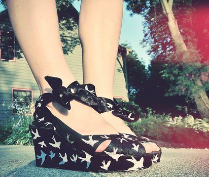 COAK Miu Miu Sparrow Shoes tutorial