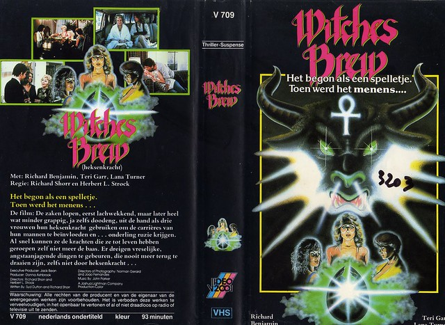 Witches Brew (VHS Box Art)