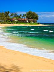 Tropical paradise, Wainiha Beach, Kauai, Hawaii (Feng Wei Photography) Tags: ocean travel blue sea wallpaper vacation usa seascape color tree green beach nature relax landscape hawaii coast scenery colorful scenic wave kauai coastline wainiha winnr wainihabeachpark wainihabeach