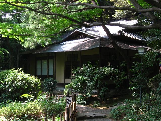 茂みに囲まれた家のフリー写真素材
