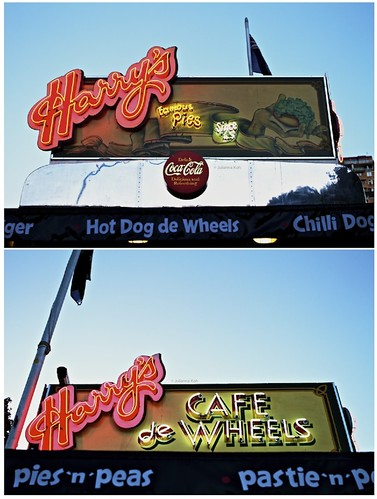 twoguineapigs pet photography woolloomooloo bay harry's cafe de wheels