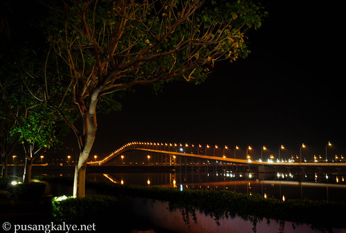 Taipa bridge