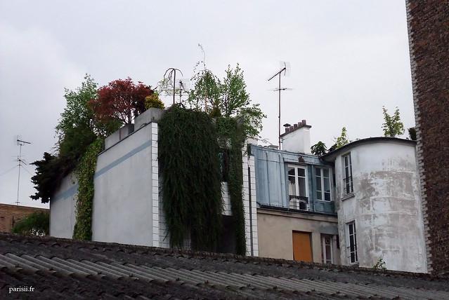 Terrasses verdoyantes sur les toits parisiens