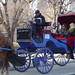NYC horse-drawn carriage driver reads newspaper