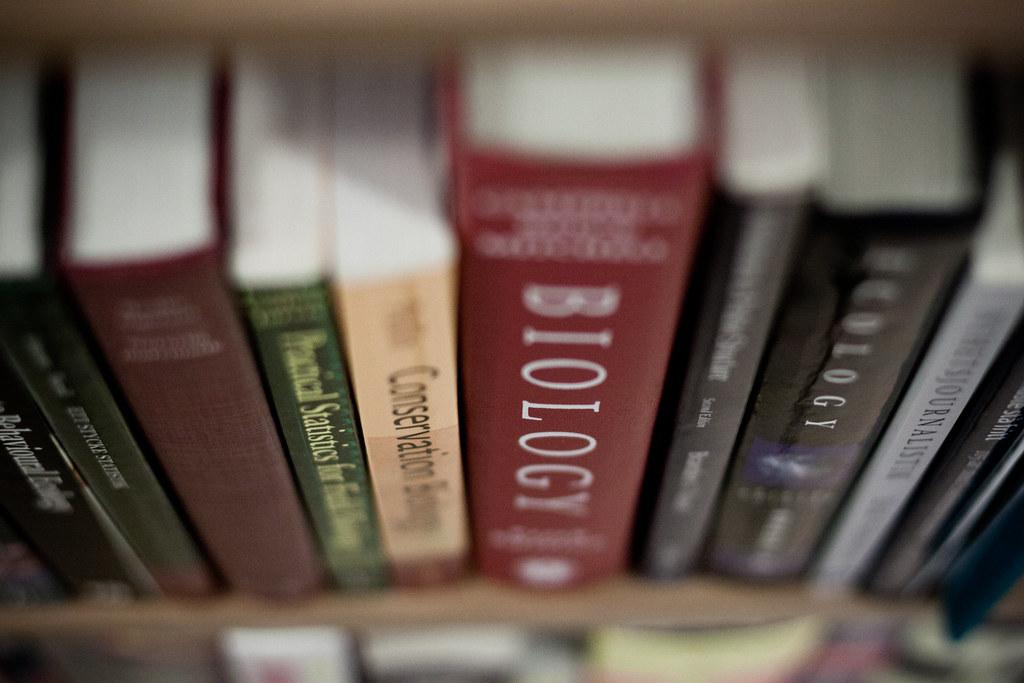 B04277 Tema: Böcker